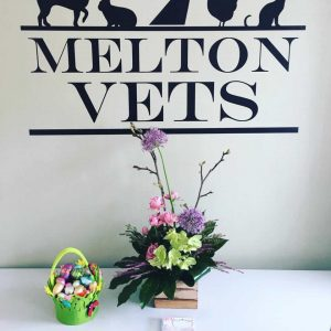 easter basket at Melton vets