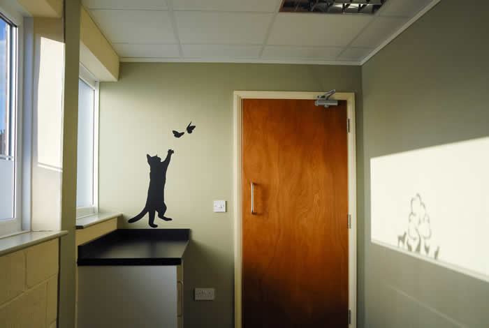 melton vets cat consult room