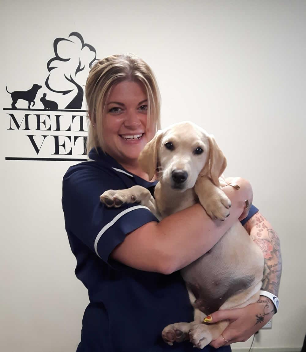 Charlotte Nurse at Melton Vets