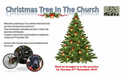 Be part of our Melton Christmas Tree!